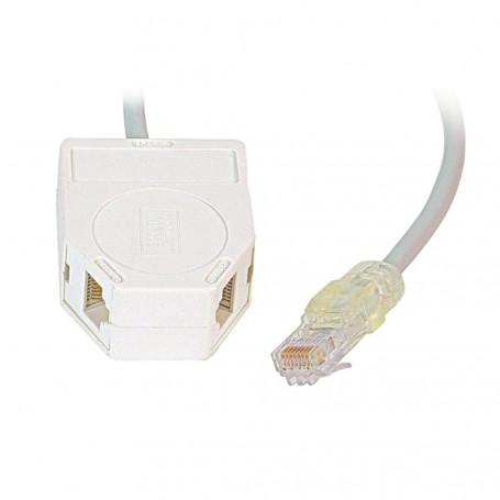 Decelect Forgos DECELECT Dédoubleur avec cordon RJ45M / 2 x RJ45F Cat.5E UTP (Connectique téléphonique)